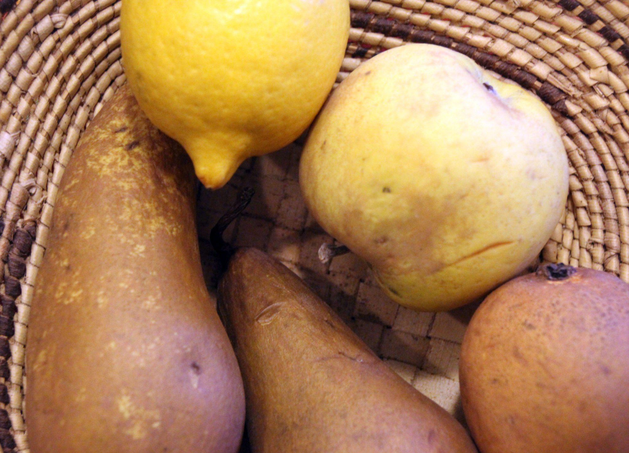 Alimentation – 27 mars 2017 – Atelier 7. Les vitamines, minéraux, fibres dans les fruits et légumes (suite)