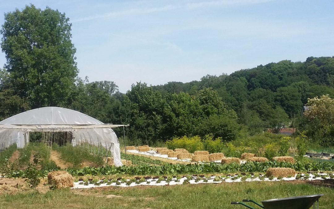L'agriculture de demain – Exemple à Mont-Saint-Guibert